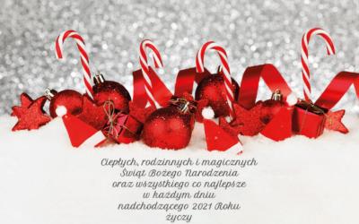 Wesołych Świąt i Szczęśliwego Nowego 2021 Roku życzy Zespół Zhermapol!