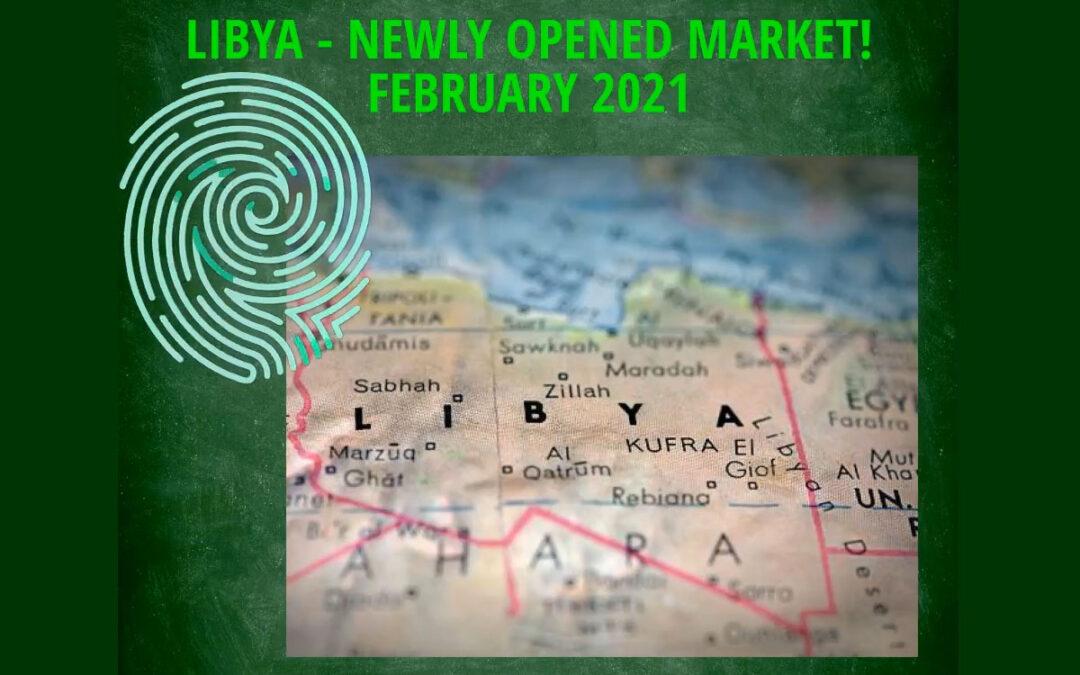 Proyecto Libia
